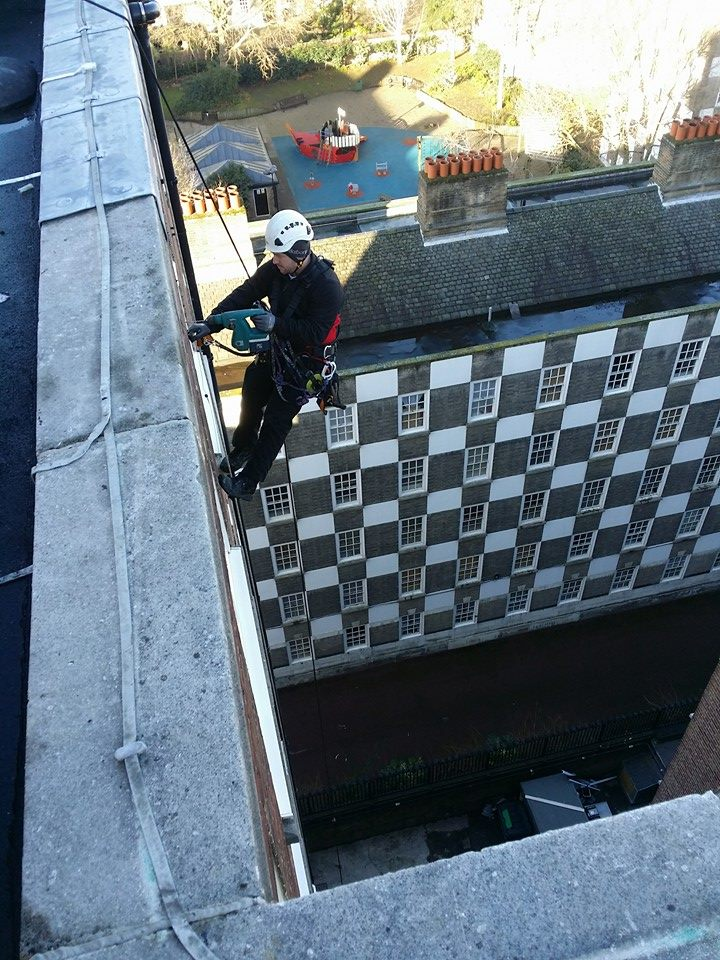 rope access installation of bird proofing/ netting being installed by High Level Specialists