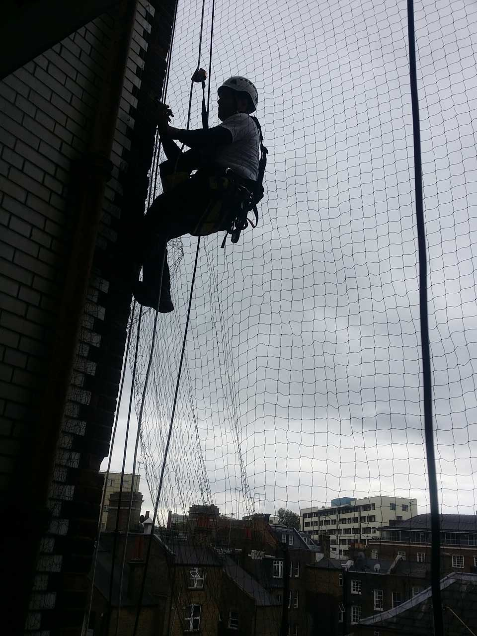 rope access technician installing bird netting on a 10 storey building in Central London